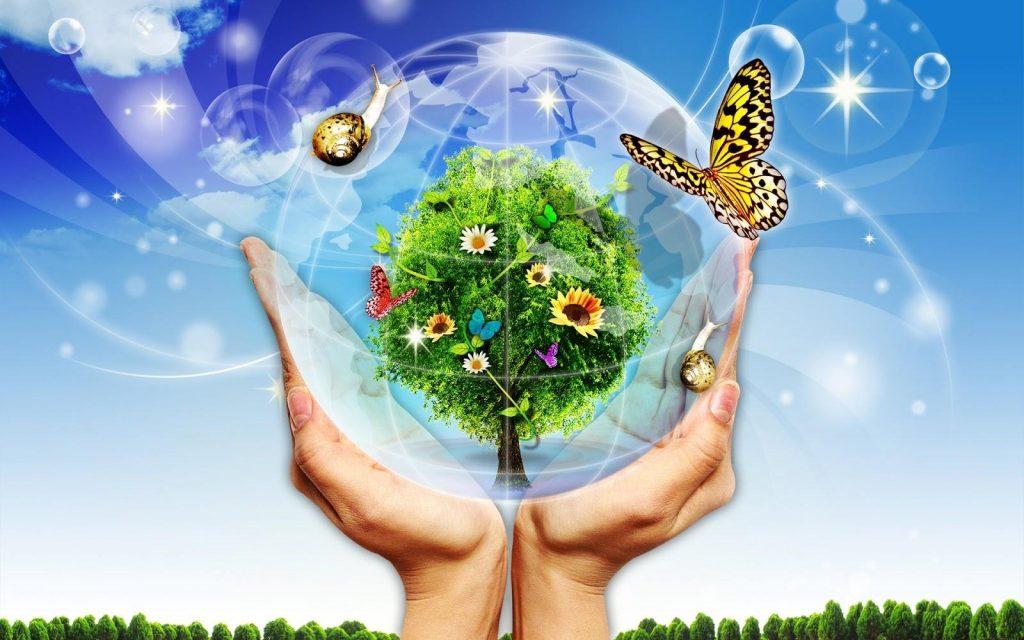 Thân thiện với môi trường